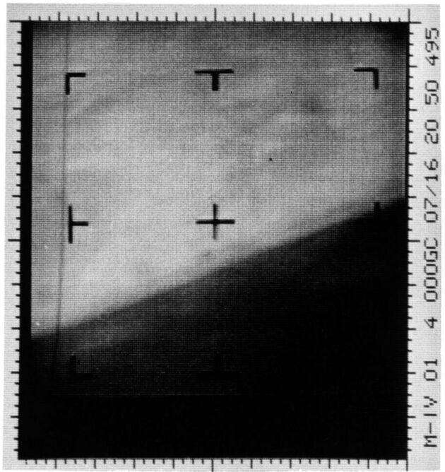Zdjęcie Marsa z sondy Mariner 4           NASA/JPL/Dan Goods