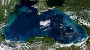 Satelita uchwycił turkusowe wiry na morzu