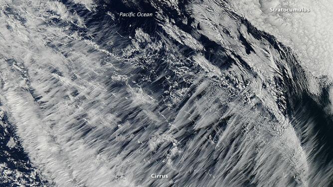 """Co to za chmury? Wybrzeże Pacyfiku pokryte """"anielskim włosem"""""""